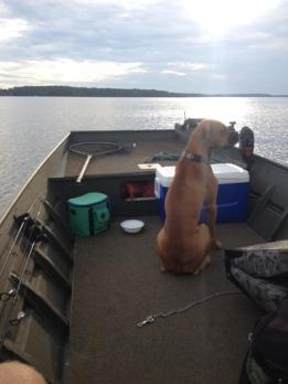 Capone on Gaston Lake