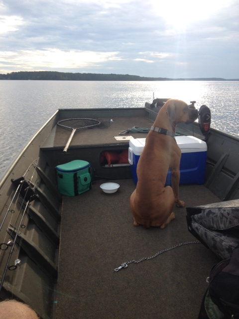 Capone on Gaston Lake