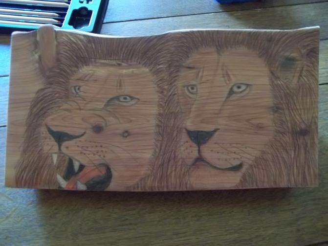 Lions8-9-16