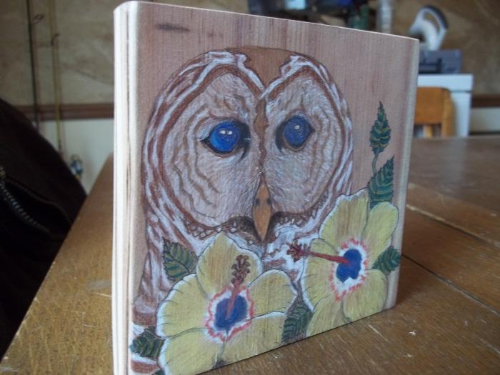 Owl & Hibiscus